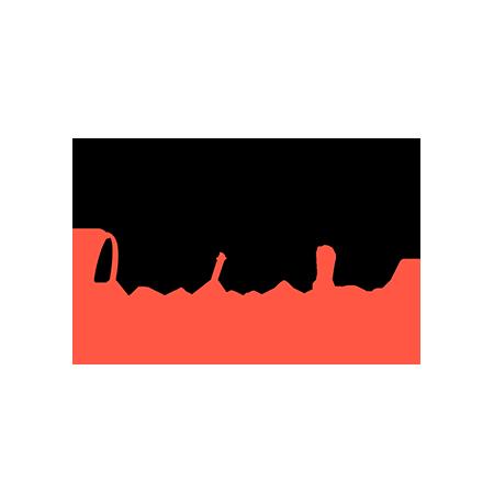 TwoNext_Logo_0000_TwoNextInclusion_Logo_final_RGB-Black