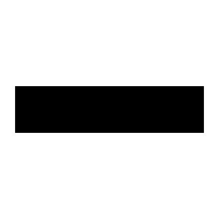 TwoNext_Logo_0002_vlabs